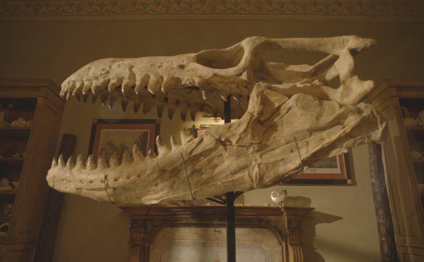"""MAGNITUDO CON CHILI  Presenta  IL PRIMO SCIENCE ROAD MOVIE  """"Dinosaurs"""""""