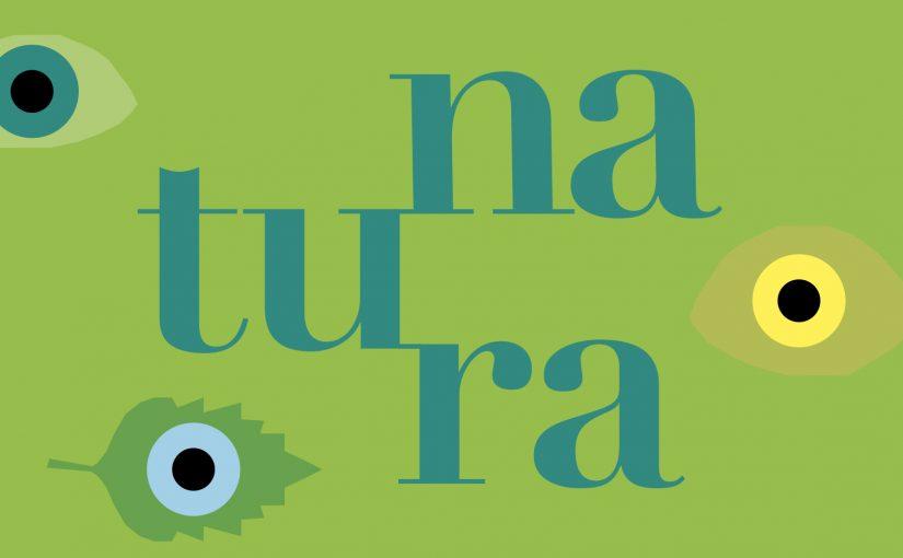 """F.I.L.A. al MUBA:  colori GIOTTO e carta Canson protagonisti di mostra """"Natura"""""""
